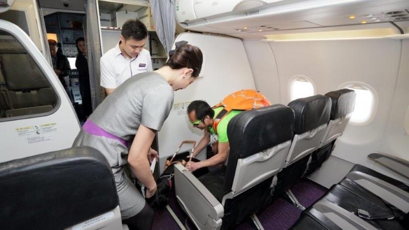 終於登上機艙,主人和導盲犬可以安坐同一機艙內。