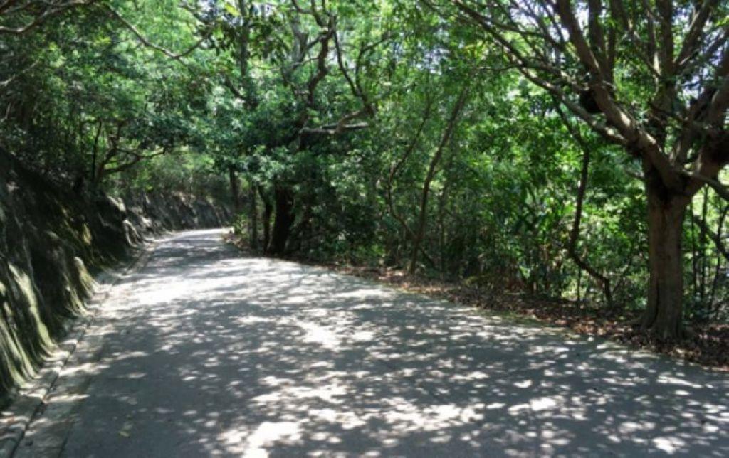 無障礙郊遊路線-太平山
