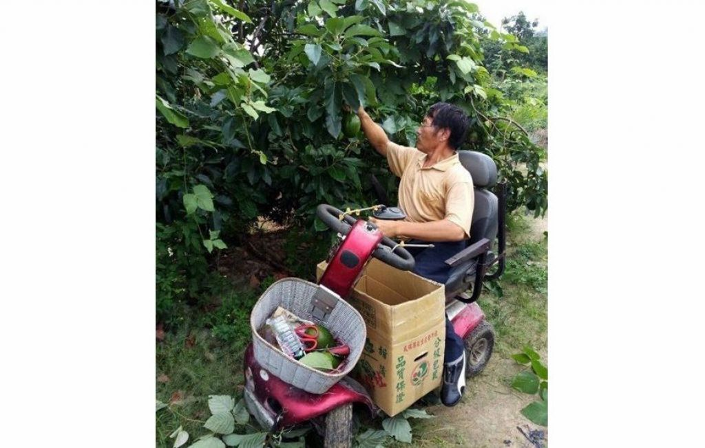 嘉義市輔具資源中心將民眾捐贈的電動代步車送給行動不便的邱姓果農