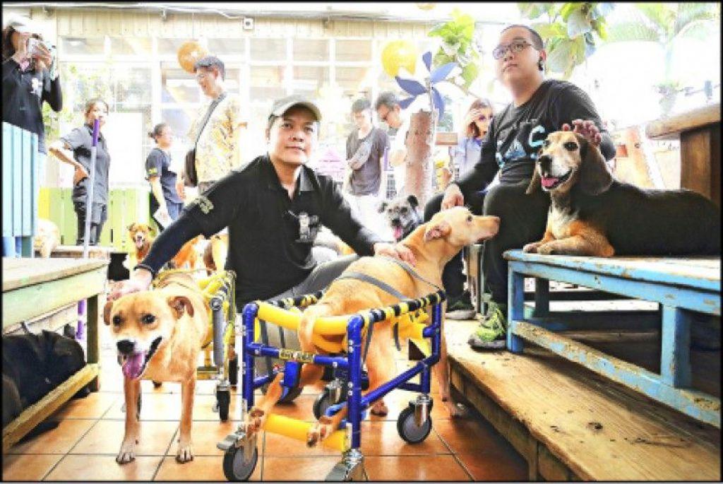 利用工作之馀,潘杰(左)为犬猫量身制作轮椅辅具,不仅价格实惠,制作过程也非常用心。