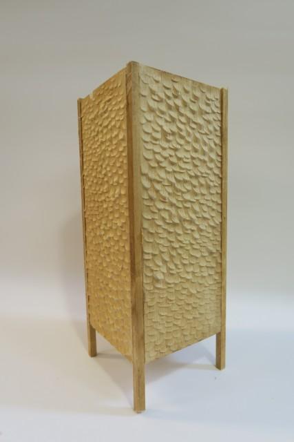 陈贯翘的作品 - 灯箱,获学生组优异奖。