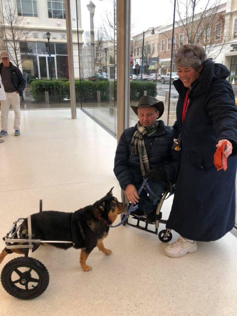 【有洋蒽】後腿癱瘓狗狗慘遭退養4次 直至遇上「最完美主人」